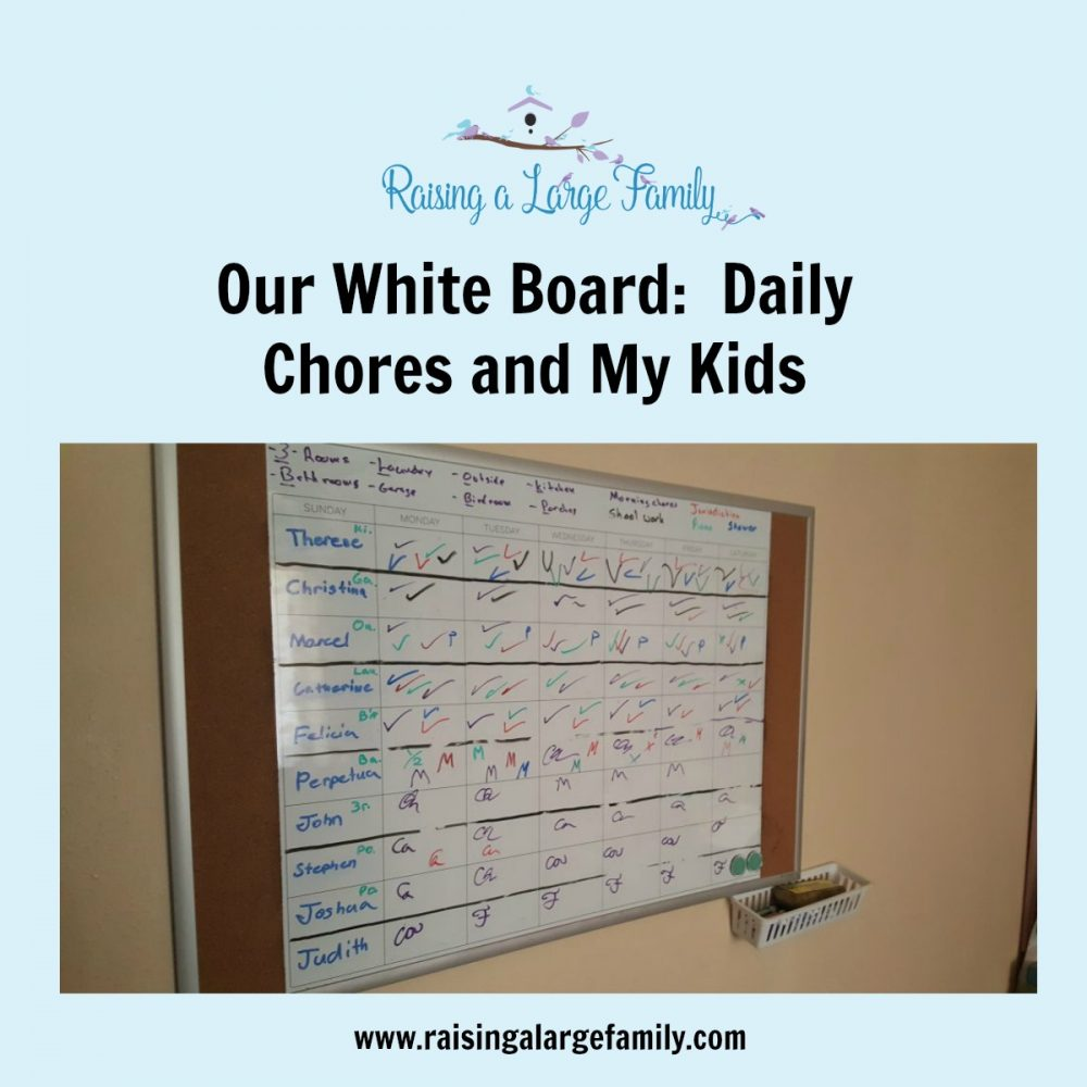 Our WhiteBoard:  Daily Chores and My Kids