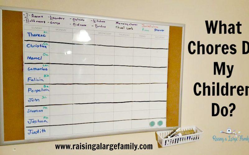 What Chores Do My Children Do?
