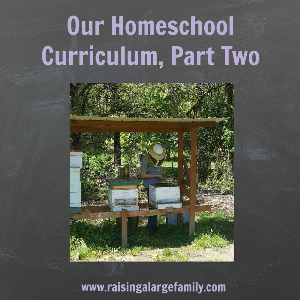 The beauty with homeschooling is that you, as the teacher and parent, get to choose what your children learn.  In our family we put a huge focus on teaching our family life skills.  We want them to succeed in life, no matter what their predominant talents are.  But, how do we accomplish this?